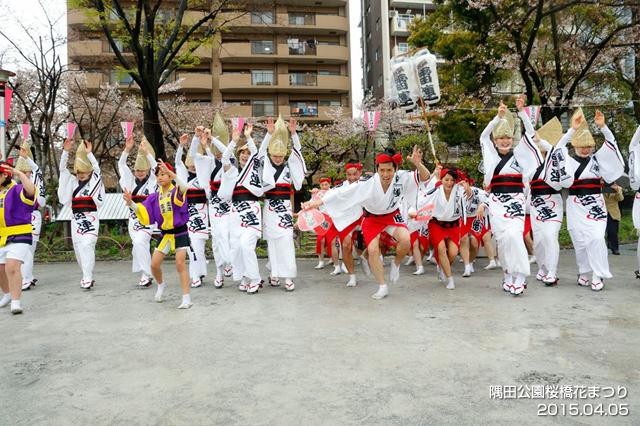 2015sakura_011